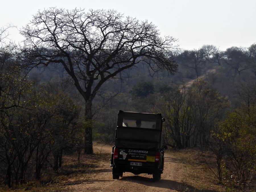 Jeep in Kruger Park